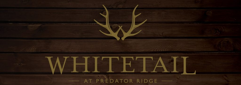 Whitetail Wood Background